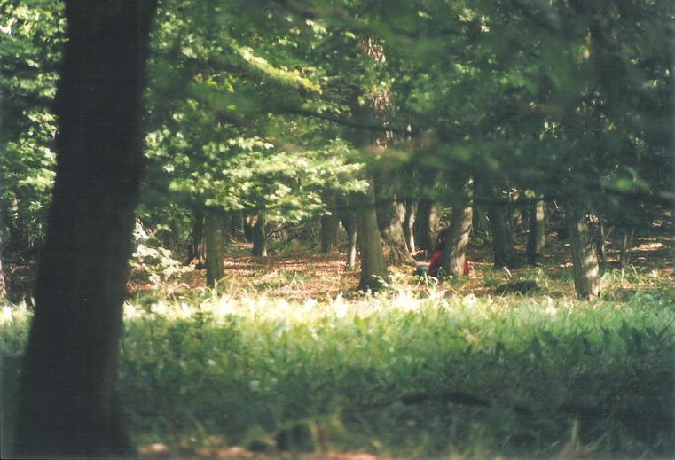 Zuhause in der Natur - Wildnisbasiskurs